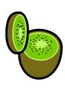 obrázek kiwi