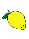 obrázek citrón