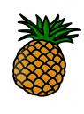 ananas obrázek
