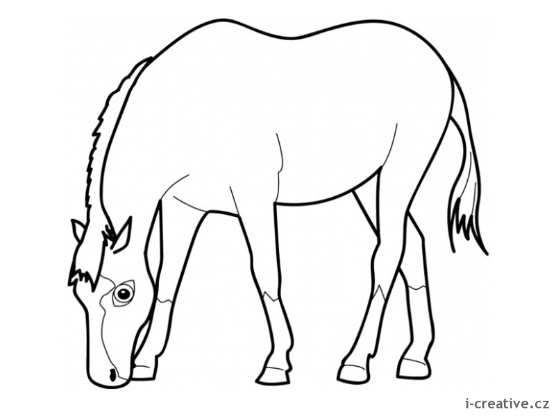 horse eating grass coloring page