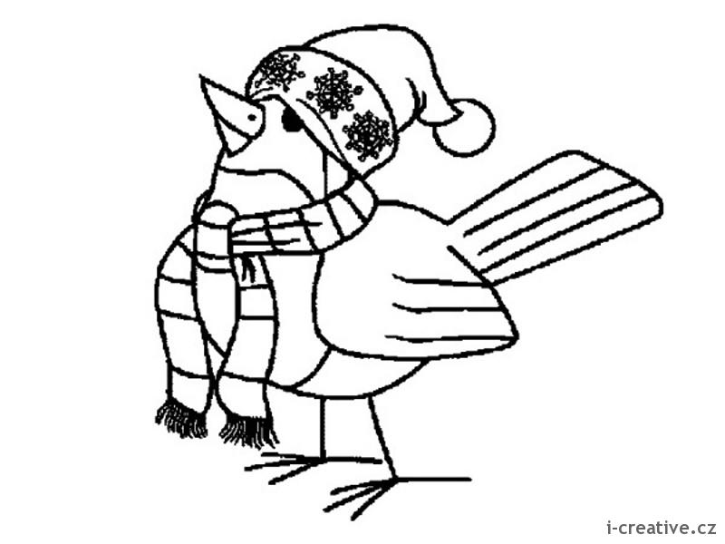 Omalovánky ptáci v zimě