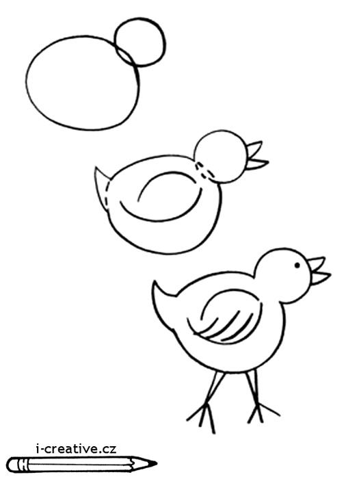 Как зафиксировать цыпленка.