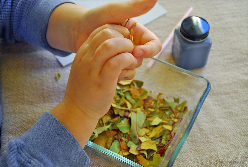 Осенняя аппликация - поделка для детей / Поделки из природного материала своими руками для детей - из шишек, из спичек, из ракуш