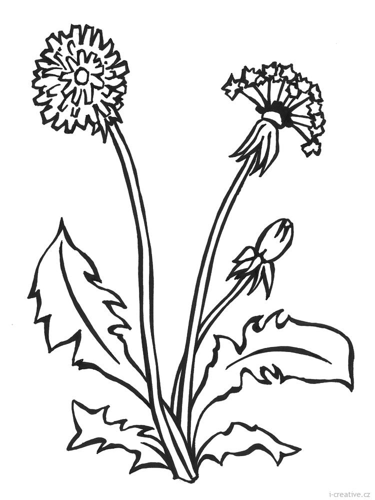 Květiny omalovánky jarní náměty květiny děti jarní květiny i