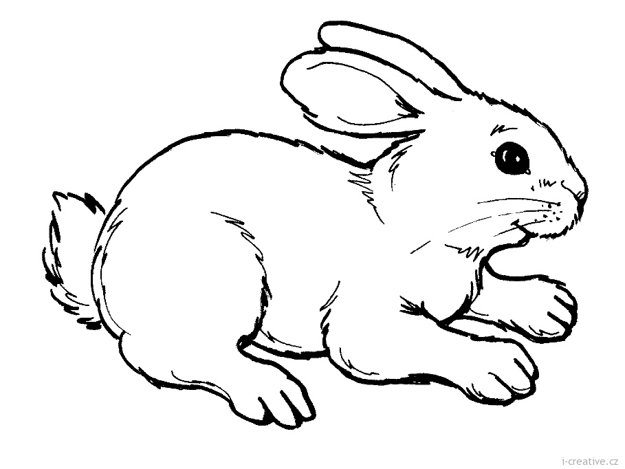 its happy bunny coloring pages - photo#7