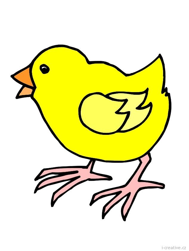 """Komentáře """"kuře kuřátka"""""""
