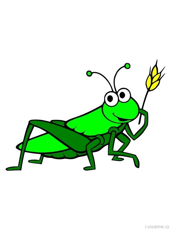 Hmyz Strategie Preziti A Ochrana Proti Skodlivemu Hmyzu
