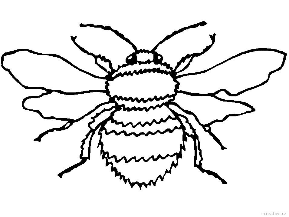 Bumble Bee Body Outline together with German Shepherd Coloring Pages Printable furthermore Safari Coloring Pages likewise Dog Bones Clipart further 134256205. on realistic dog coloring pages