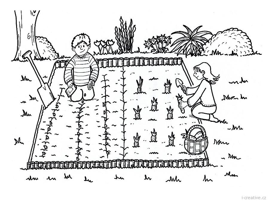 Venkovni Zahrada