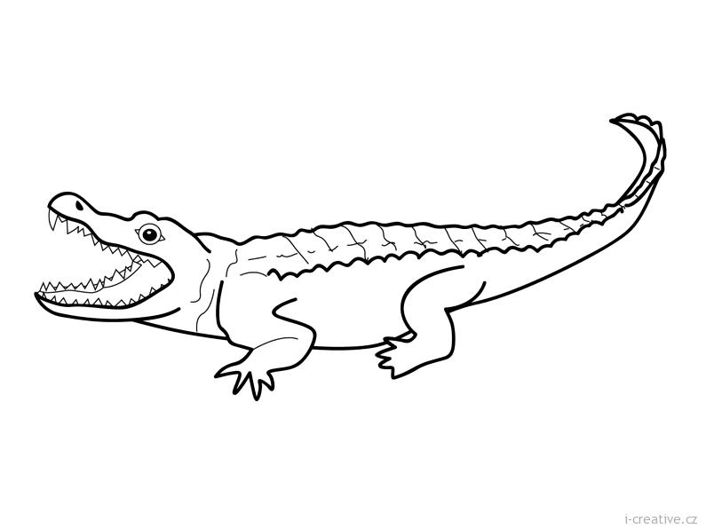 Krokod 253 L Omalov 225 Nka I Creative Cz Inspirace N 225 Vody A