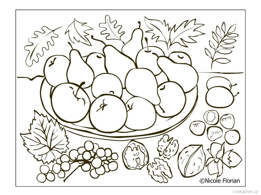 Podzimní omalovánky k vytisknutí