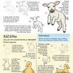 jak nakreslit ovečku a káčátko