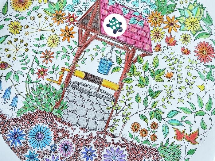 Tajná zahrada omalovánka
