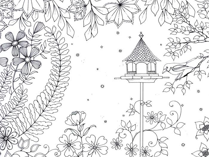 Tajná zahrada omalovánky ukázka