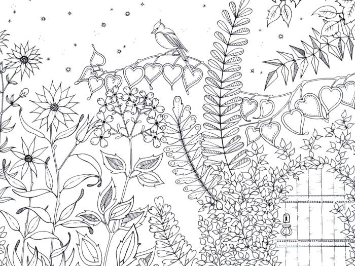 omalovánky Tajná zahrada