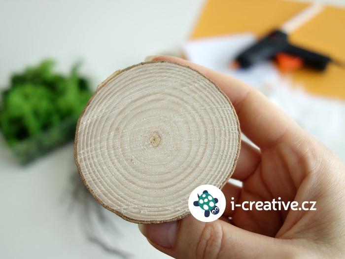 plát (kolečko) dřeva