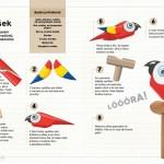 jak vyrobit papouška z papírových roliček