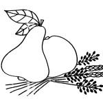 jablko hruška