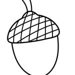 žalud omalovánka